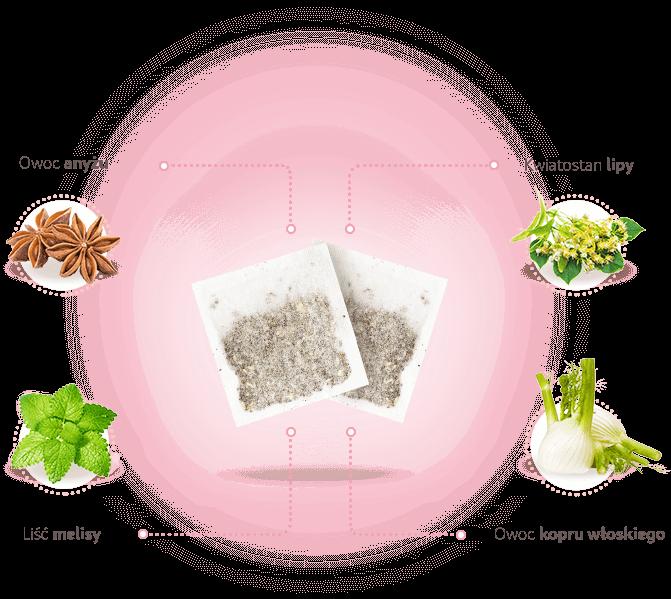 Składniki herbatki w saszetkach Lactosan Fix